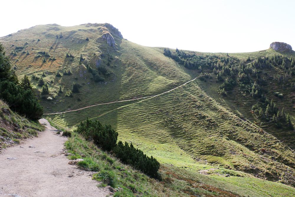 Abwechslungsreich geht's über den Rücken des Lempersberg bis zum Kirchstein