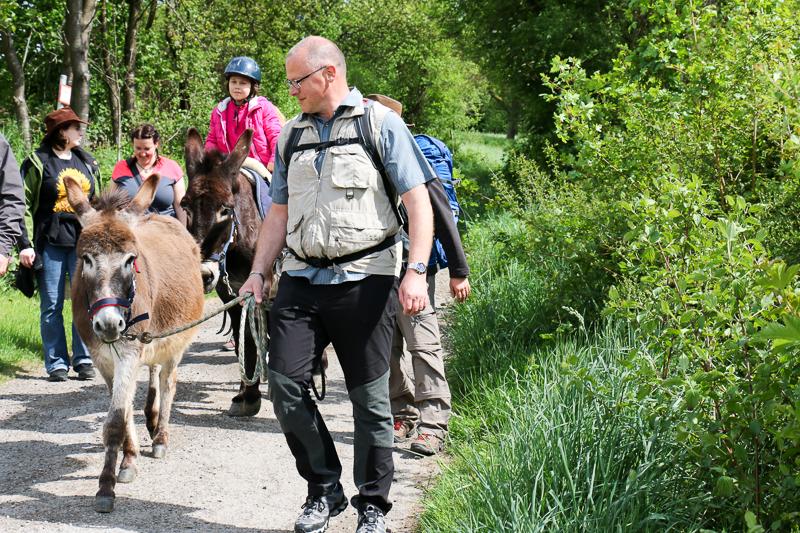 Eselwanderung im Bliesgau