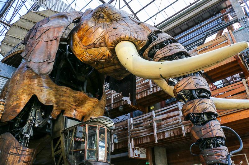 Elefant in Nantes