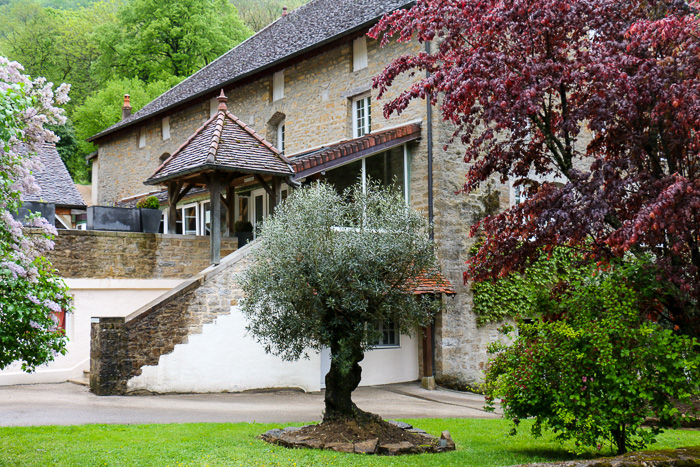 Castel Damandre, Planches-pres-Arbois