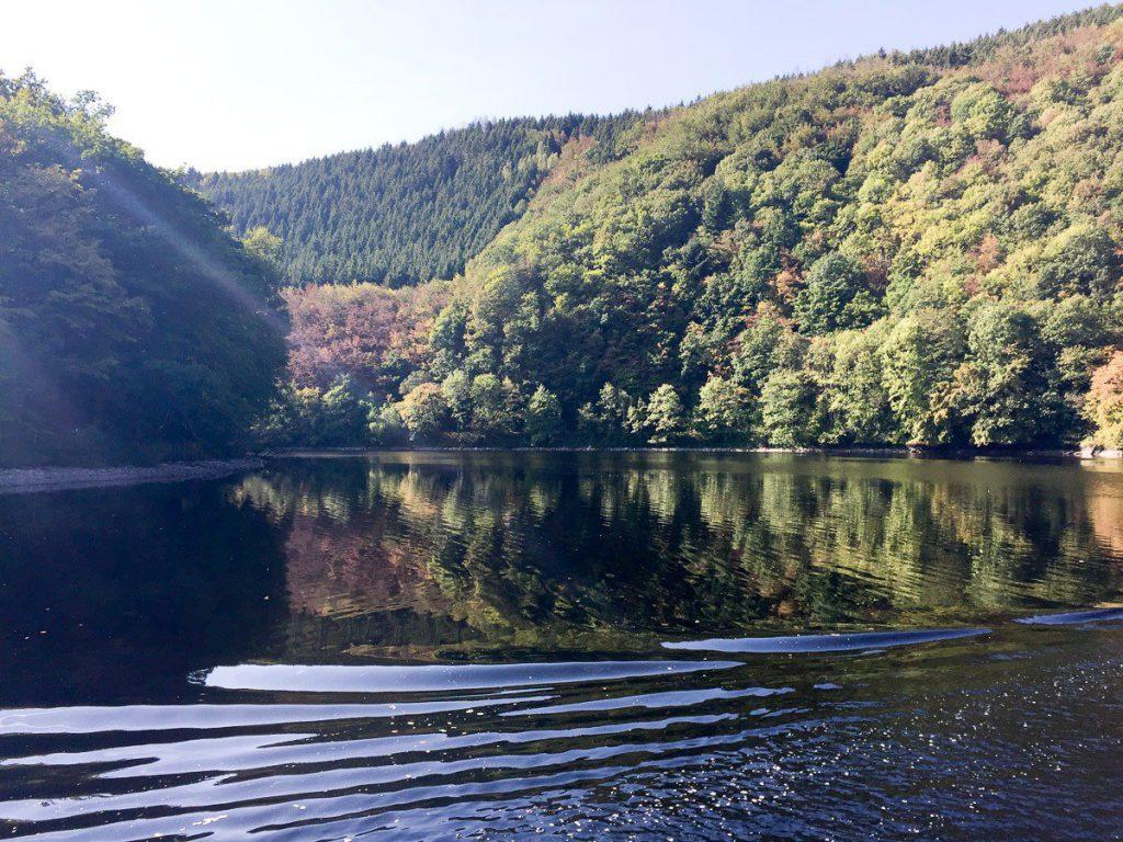 Eifel Nationalpark: Wildtiere, Seen und ein Geisterdorf