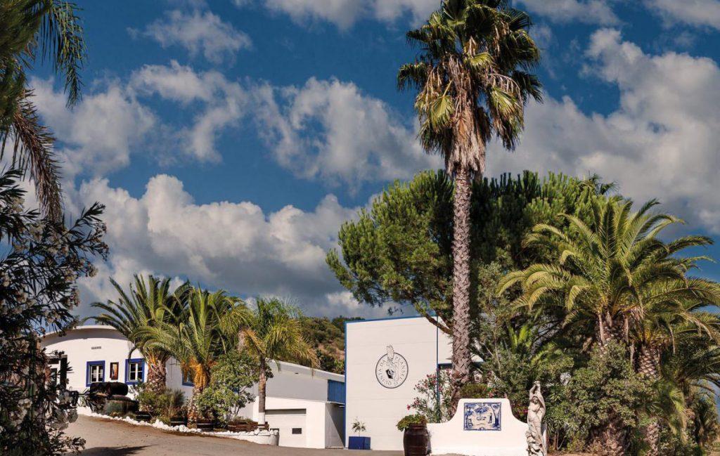 Alentejo: Küste, Korkeichen und kolossal gute Weine