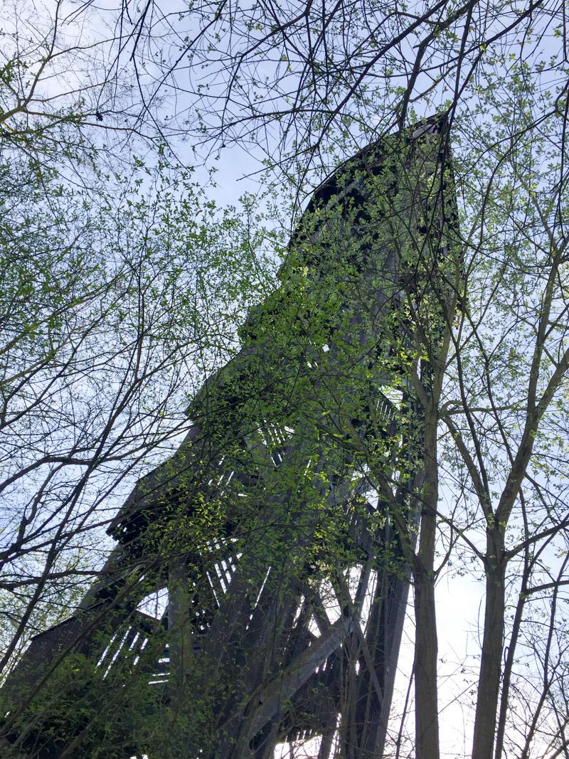 Breath-Walk zum Bismarck-Turm
