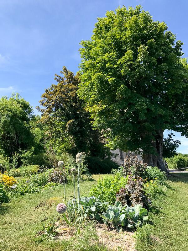 Wilder Garten im Landgut Corboyer