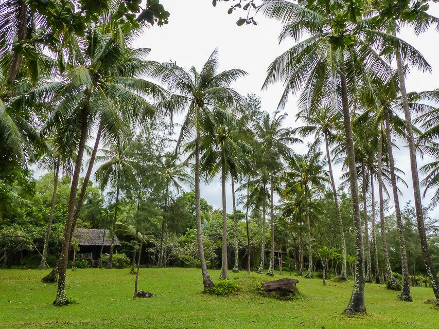 Garten des Mango Bay Resorts
