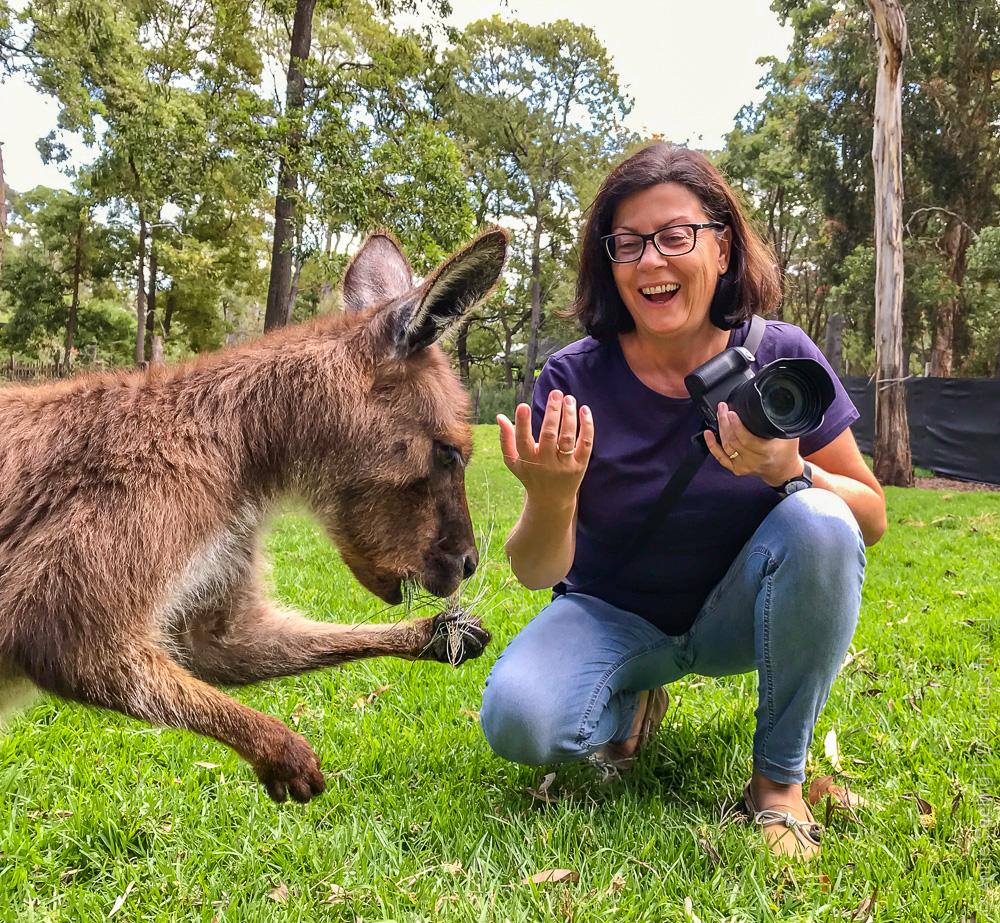 Fotosession mit Känguru