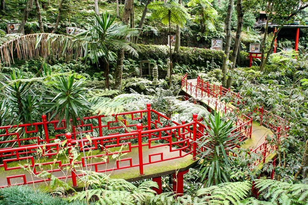 Ruhe finden im Botanischen Garten, Funchal, Madeira