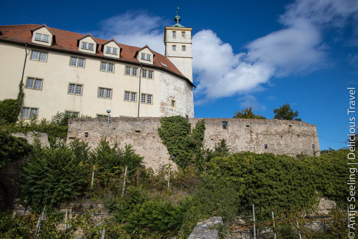 Vahinger Schloss Kaltenberg