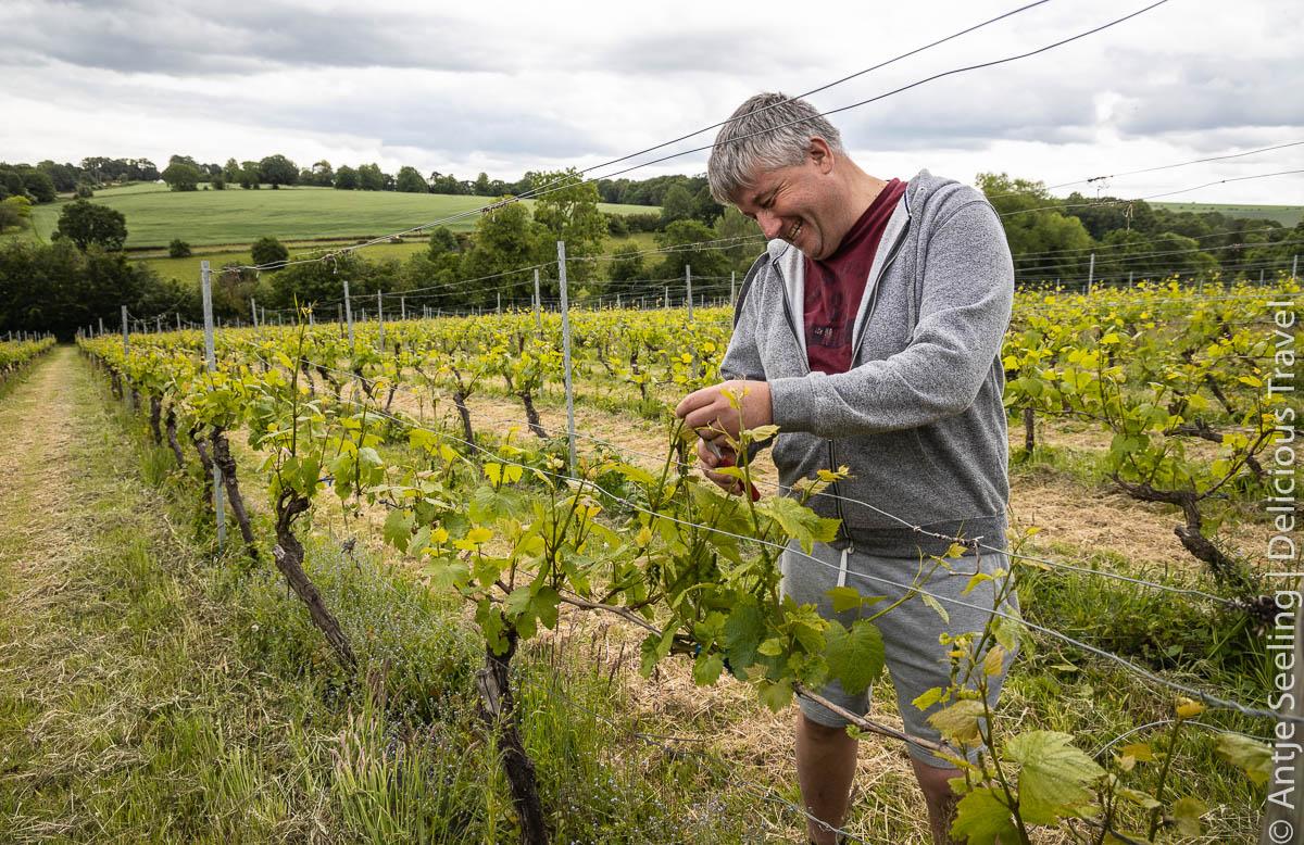 a'Becketts Vineyard