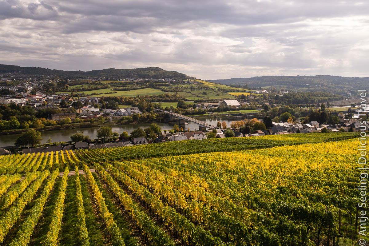 Luxemburger Mosel Wein