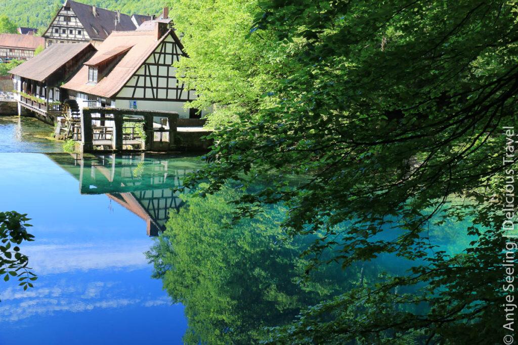 Ausflugsziele in Baden-Württemberg: Wo ist das Ländle am schönsten?