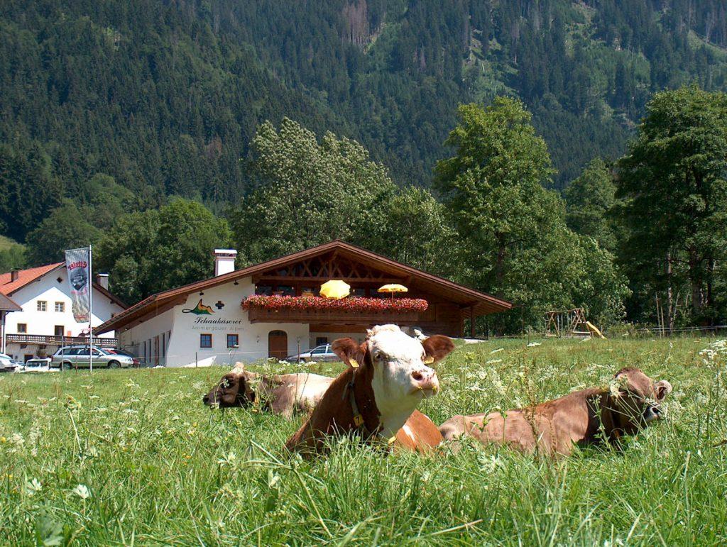 Wilde Schönheit & altes Handwerk im Naturpark Ammergauer Alpen