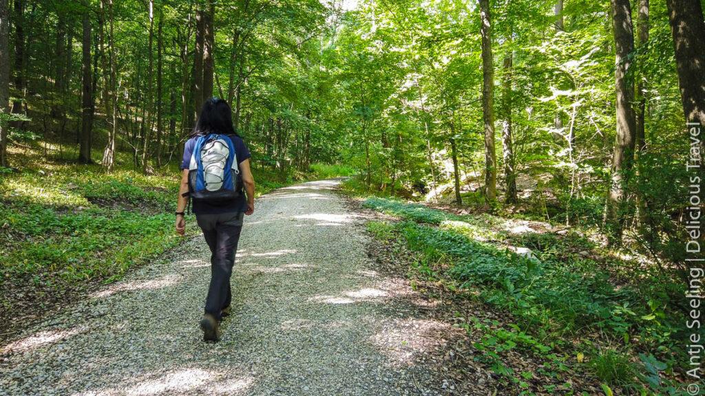 steigerwald-wandern