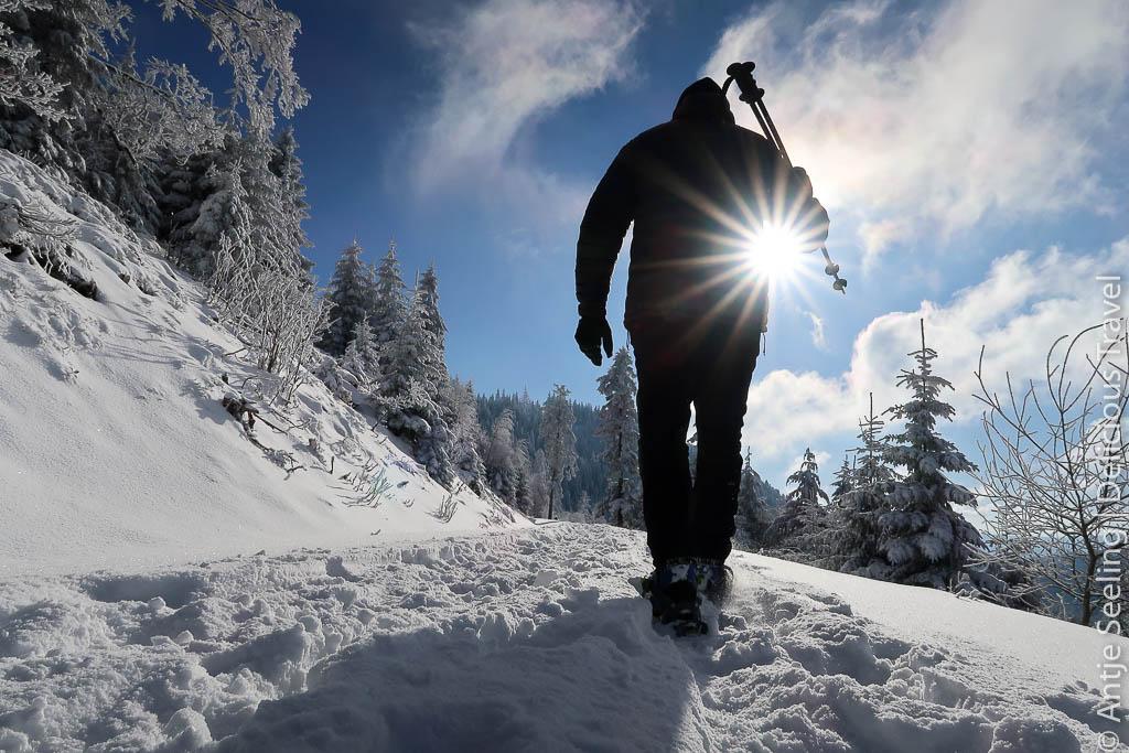 Winterwandern Nordschwarzwald