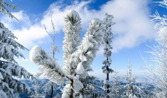 winterwanderung schwäbische alb