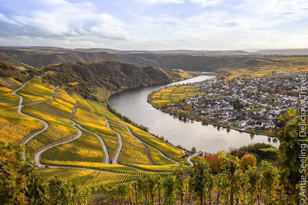 Mosel, Rhein & Main: Wein & Genuss auf dem Fluss