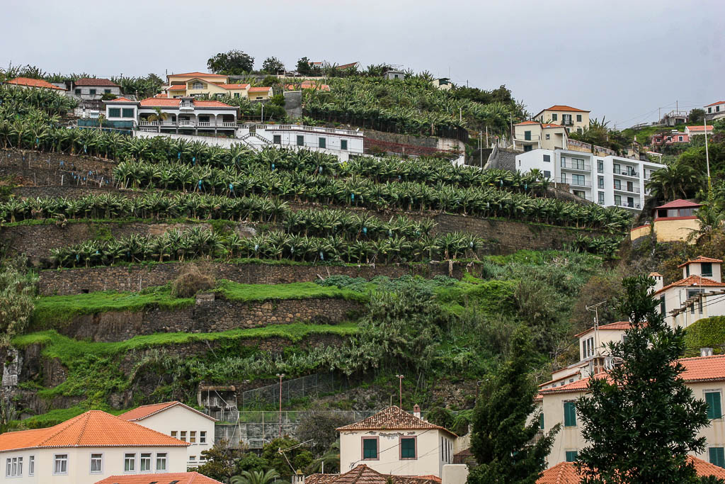 Madeira Highlights