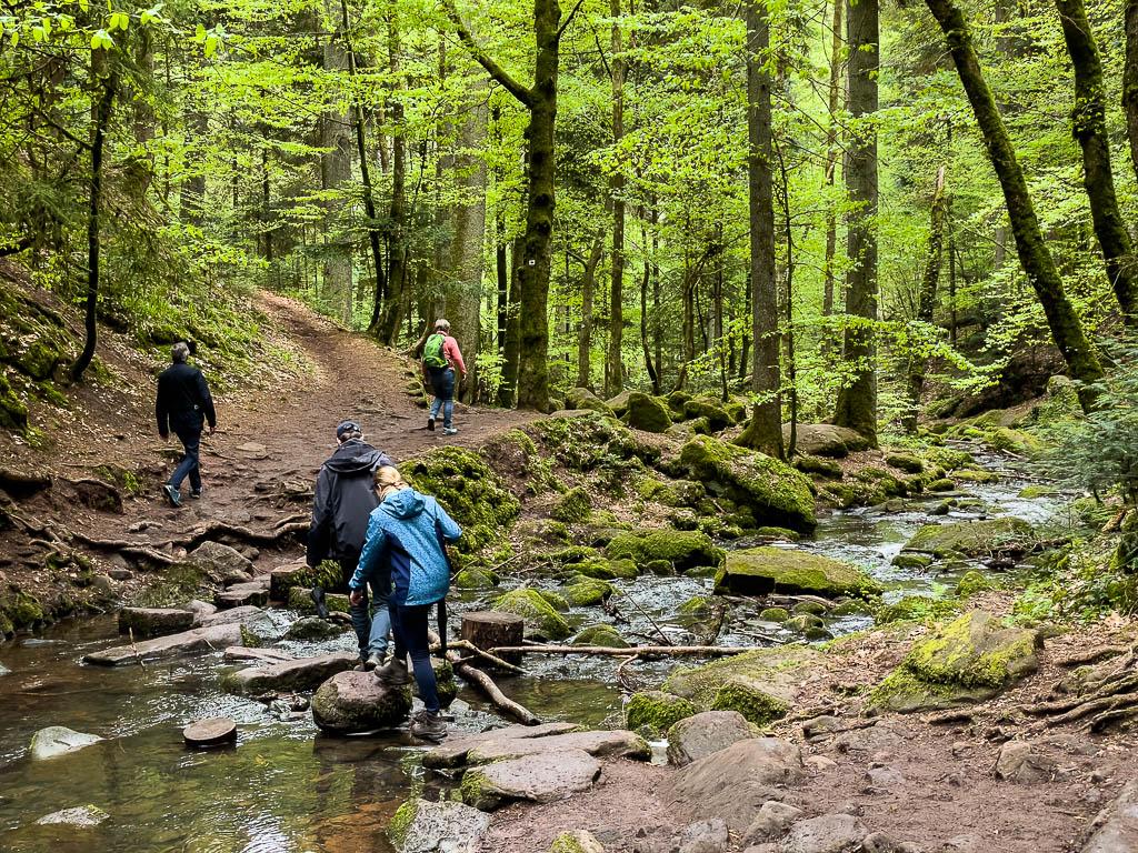 Monbachtal Wanderung