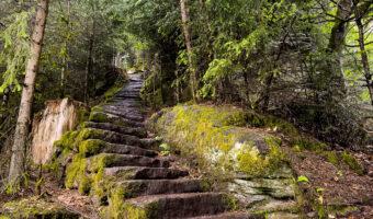 Mathildenstaffel Der Teinacher Premiumweg im Nordschwarzwald