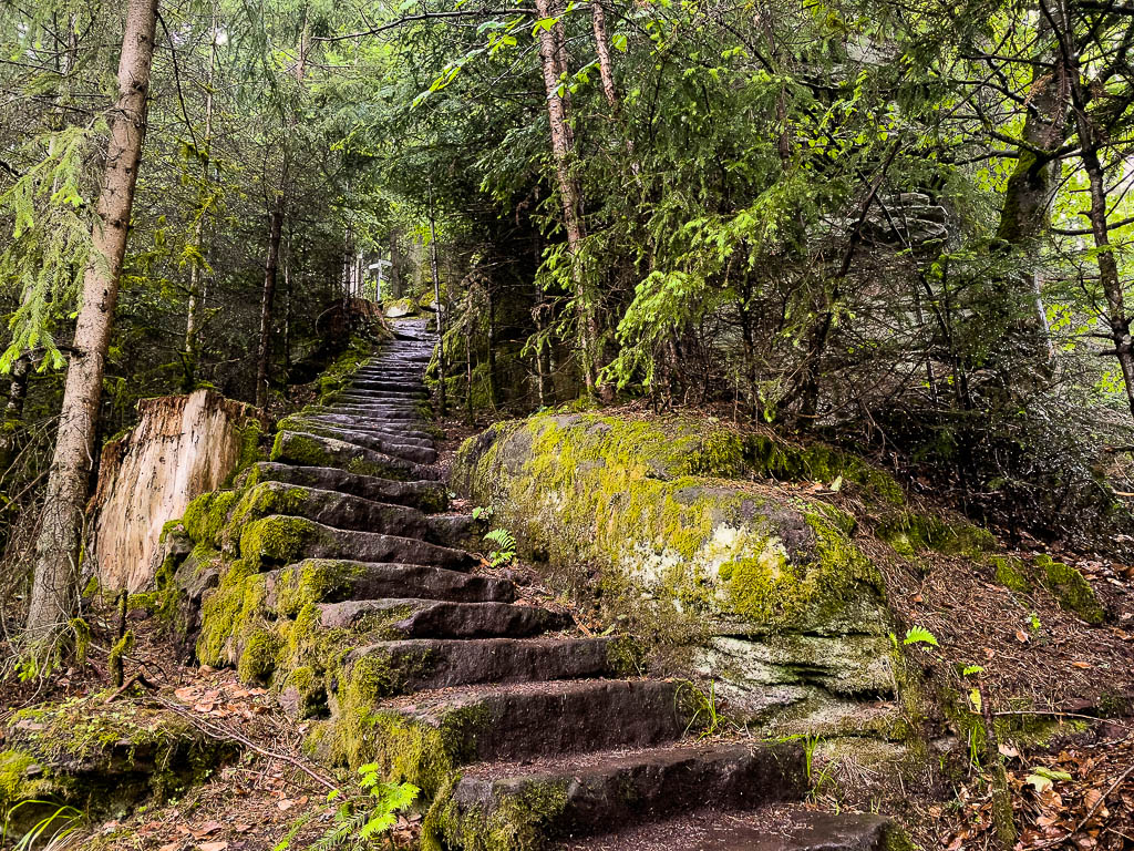 Im Nordschwarzwald wandern: Der Teinacher Premiumweg