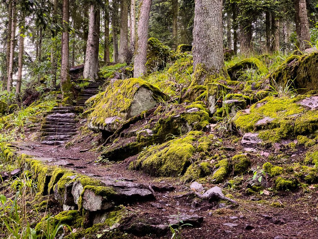Der Teinacher Premiumweg im Nordschwarzwald