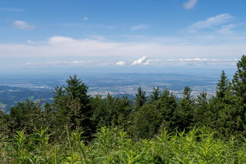 Aussicht vom Kandel, Schwarzwald